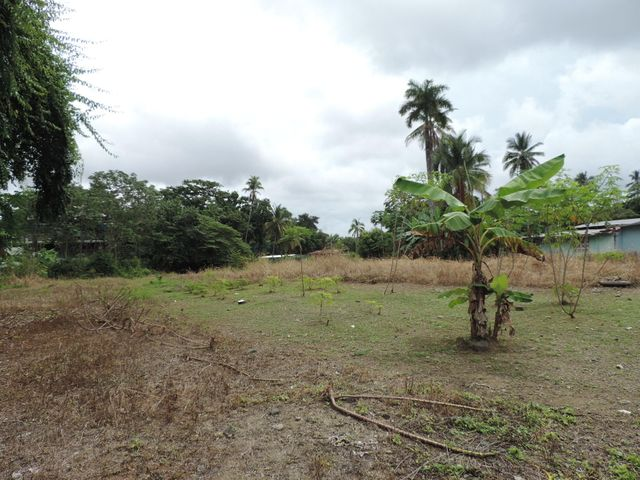 Terreno Panama>Panama>Juan Diaz - Venta:1.258.800 US Dollar - codigo: 21-2081