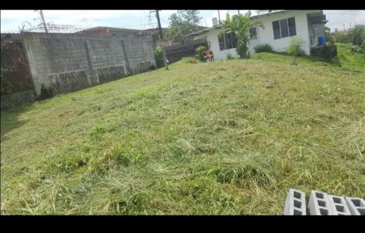 Terreno Panama>Panama>Juan Diaz - Venta:27.000 US Dollar - codigo: 21-2129
