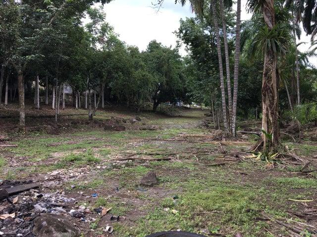 Terreno Chiriqui>Baru>Progreso - Alquiler:7.055 US Dollar - codigo: 21-3062