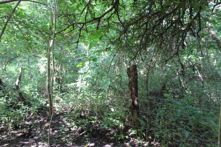 Terreno Panama>Chame>Punta Chame - Venta:618.583 US Dollar - codigo: 21-4003