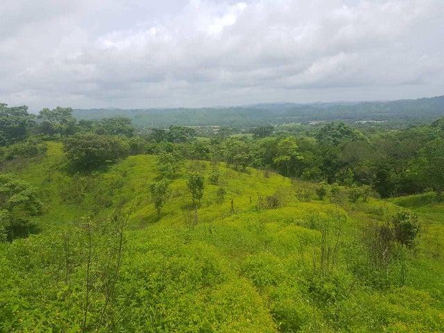 Terreno Panama>Chepo>Las Canitas - Venta:300.000 US Dollar - codigo: 21-4398