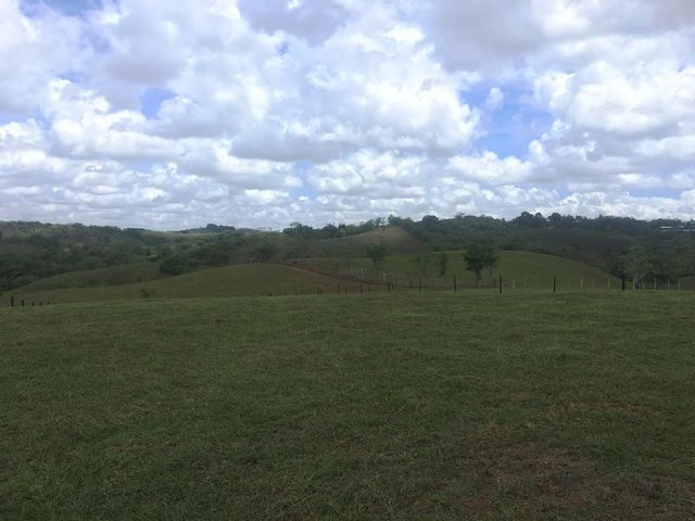 Terreno Panama>Panama Oeste>Capira - Venta:71.996 US Dollar - codigo: 21-4562