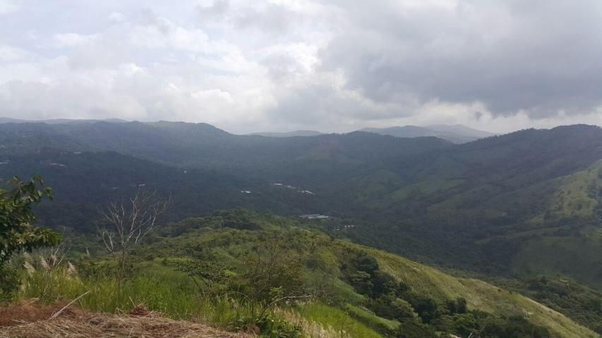 Terreno Panama>Pacora>Cerro Azul - Venta:1.925.000 US Dollar - codigo: 21-9730