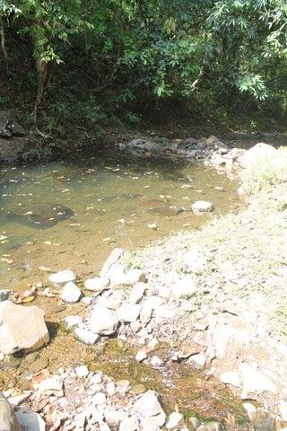 Terreno Panama>Chilibre>San Vicente - Venta:1.825.000 US Dollar - codigo: 21-6305