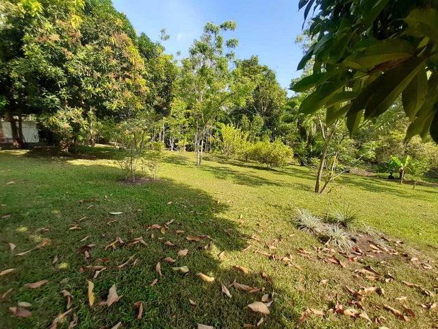 Terreno Panama>La chorrera>Chorrera - Venta:195.000 US Dollar - codigo: 21-2634