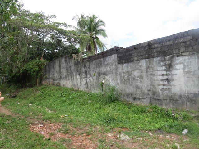 Terreno Panama>Panama>Las Cumbres - Venta:130.000 US Dollar - codigo: 21-8221