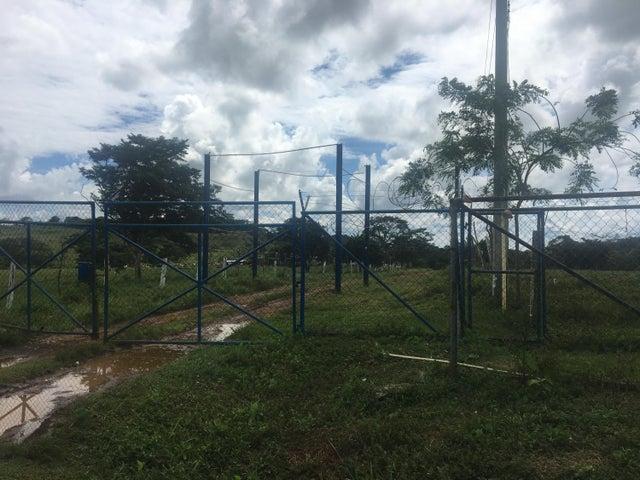 Industrial Panama>La chorrera>Chorrera - Venta:2.300.000 US Dollar - codigo: 21-8948