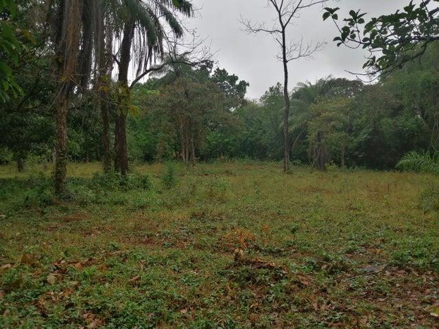 Terreno Chiriqui>Boquete>Alto Boquete - Venta:185.000 US Dollar - codigo: 21-9600
