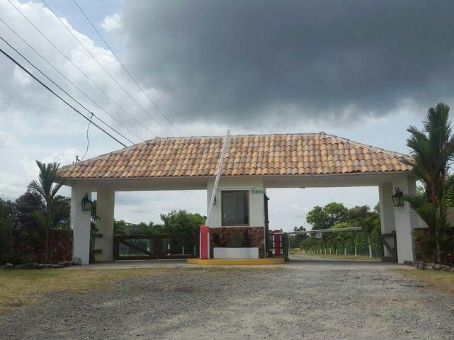 Terreno Panama>Chame>Punta Chame - Venta:50.000 US Dollar - codigo: 21-9624