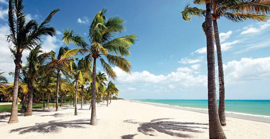 Terreno Cocle>Rio Hato>Buenaventura - Venta:514.000 US Dollar - codigo: 21-9667