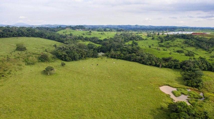 Terreno Panama>La chorrera>Chorrera - Venta:587.511 US Dollar - codigo: 21-11143
