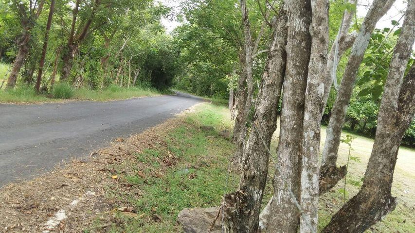 Terreno Panama>San Carlos>San Carlos - Venta:70.000 US Dollar - codigo: 22-2862