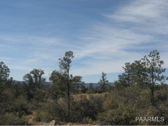 15175 N Little Diamond Way Prescott, AZ 86305 - MLS #: 968136