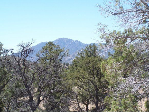6735 W Almosta Ranch Road Prescott, AZ 86305 - MLS #: 955964