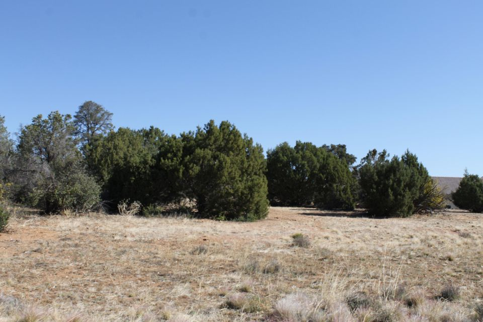 5700 W Almosta Ranch Prescott, AZ 86305 - MLS #: 978406