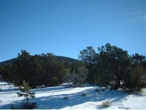 7382 N Apache Avenue Williams, AZ 86046 - MLS #: 982881
