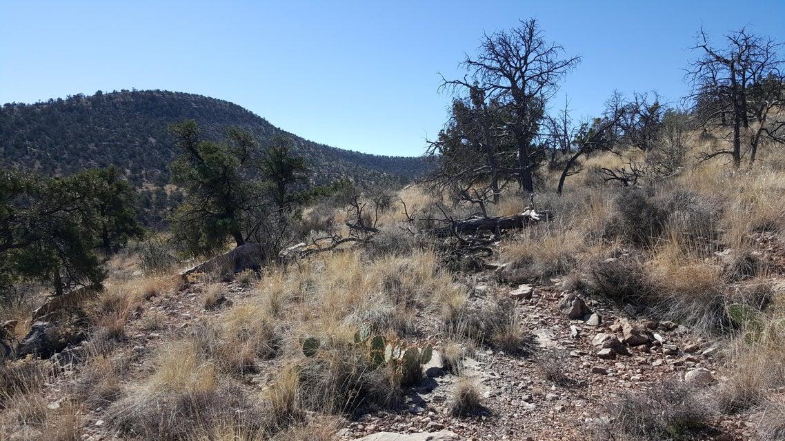 3501 N Geiler Road Chino Valley, AZ 86323 - MLS #: 992784