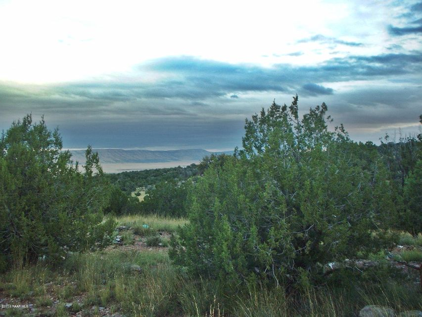 56565 N Bearclaw Road Seligman, AZ 86337 - MLS #: 994657