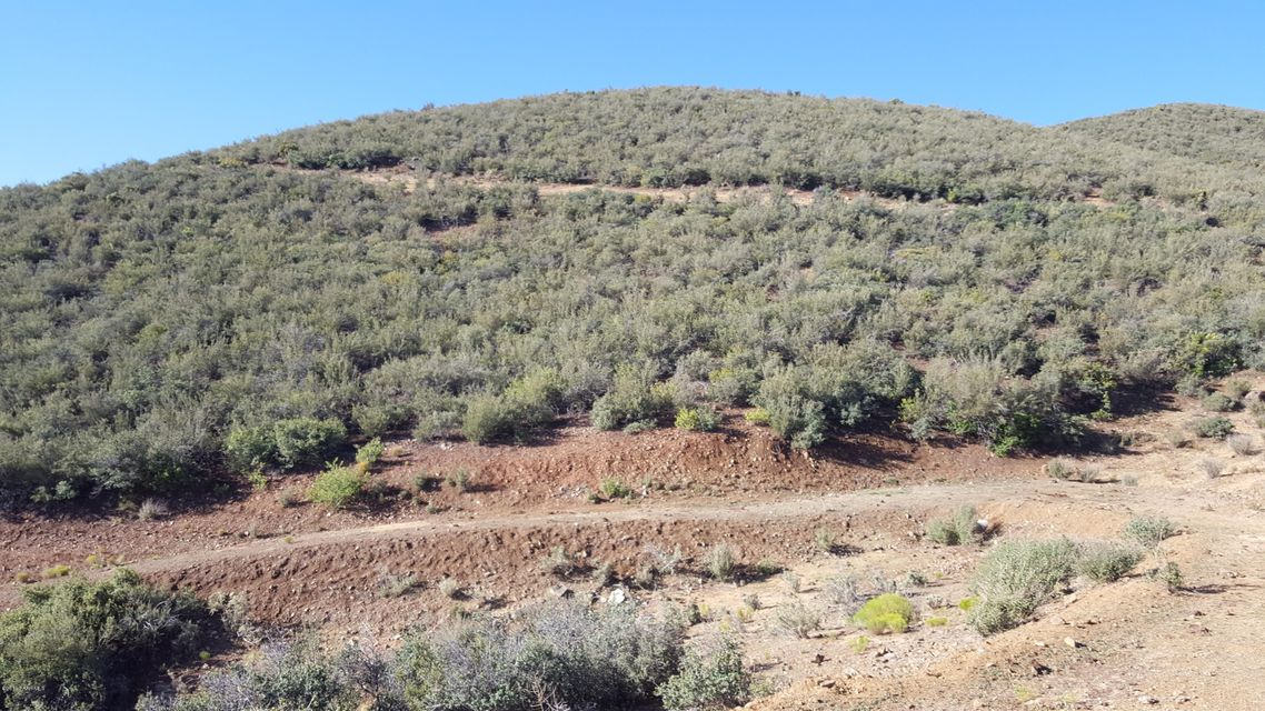 0 S Elizabeth Mine Road Mayer, AZ 86333 - MLS #: 997186