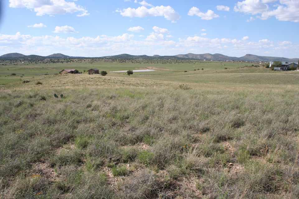 1165 S Table Mountain Road Chino Valley, AZ 86323 - MLS #: 994792
