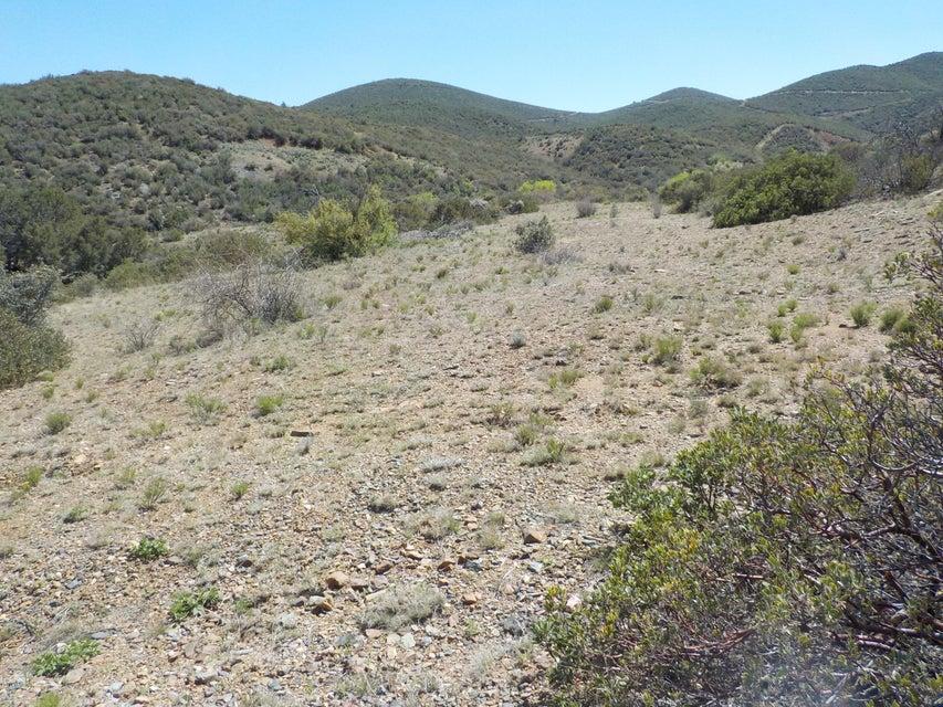 0 Iron King Road Dewey-Humboldt, AZ 86327 - MLS #: 1003013