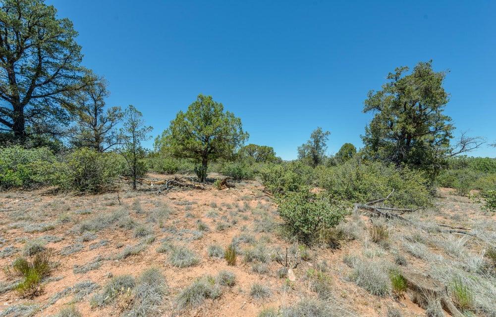 15500 N Heatherbrae Drive Prescott, AZ 86305 - MLS #: 1004356