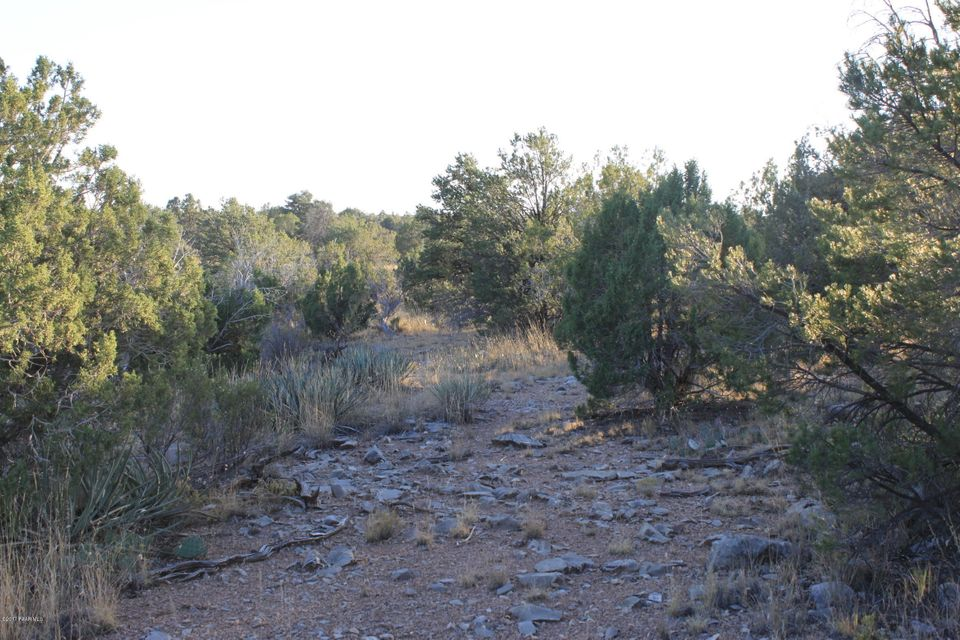 None Seligman Seligman, AZ 86337 - MLS #: 1006592