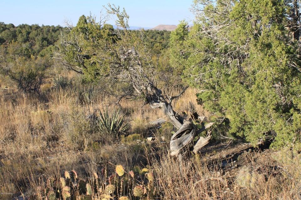None Seligman Seligman, AZ 86337 - MLS #: 1006594