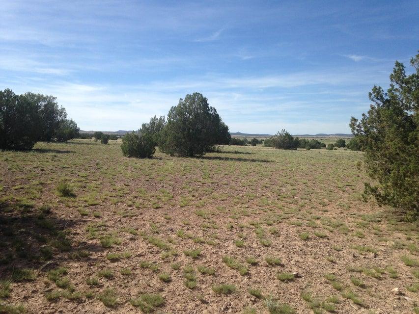 33 Antelope Run Ash Fork, AZ 86320 - MLS #: 1010214