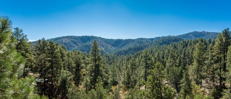 6705 S Golden Dollar Lane Prescott, AZ 86303 - MLS #: 1010501