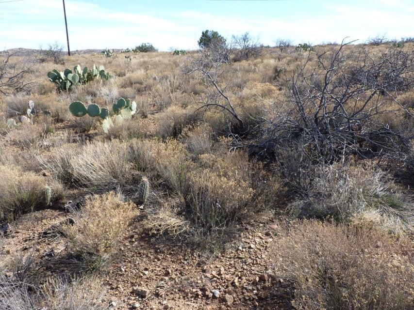 20253 E Kino Road Mayer, AZ 86333 - MLS #: 1010604