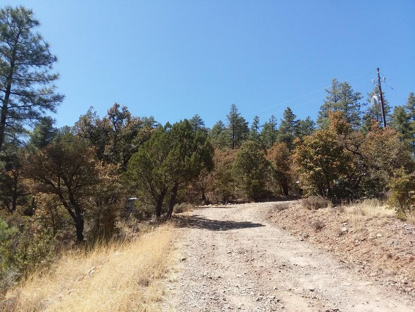 5025 S Blue Jay Road Prescott, AZ 86303 - MLS #: 1011164
