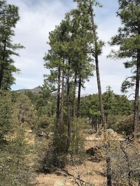 0 W Coyote Run Trail Prescott, AZ 86303 - MLS #: 1011197