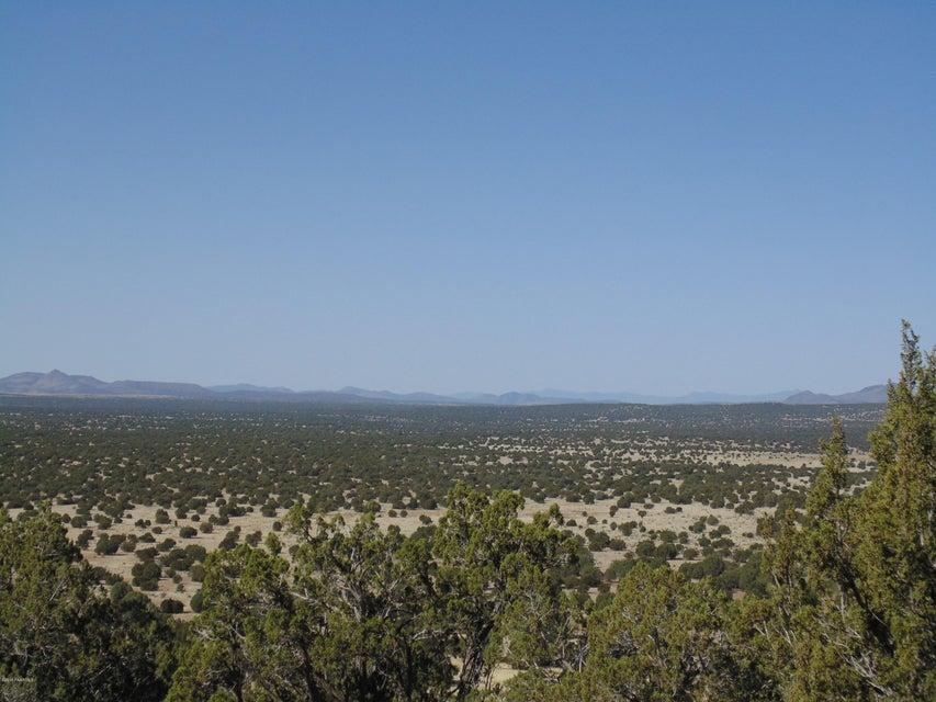 556 N Caliente Wind Way Seligman, AZ 86337 - MLS #: 1011213