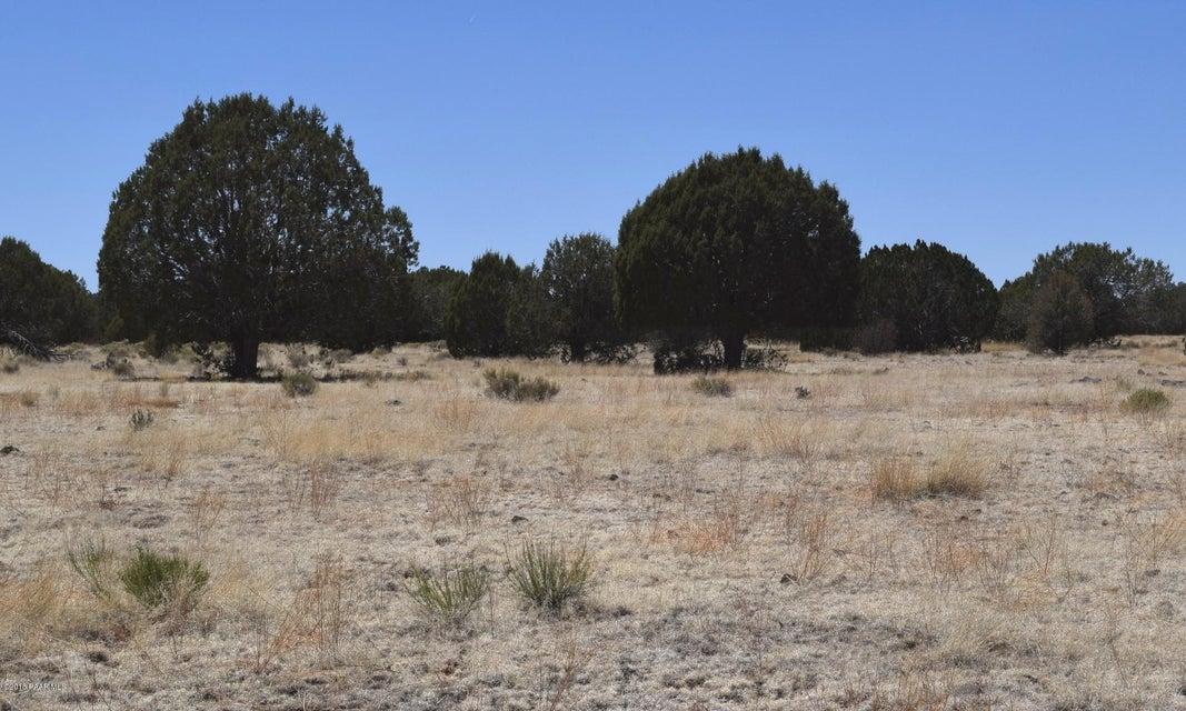 221 Sierra Verde Ranch Seligman, AZ 86337 - MLS #: 1012030