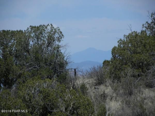1545 N Three Ranch Road Chino Valley, AZ 86323 - MLS #: 1012433