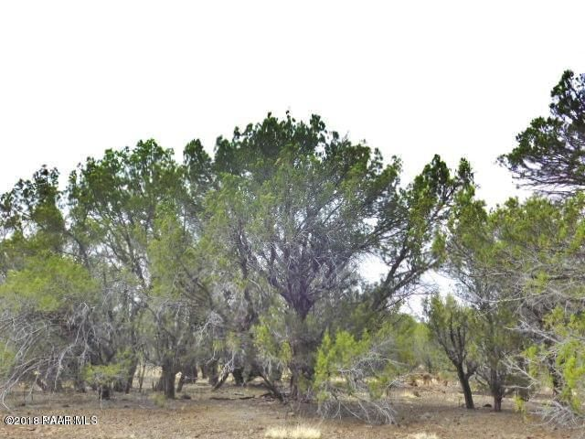 Lot 982 Westwood Ranches Seligman, AZ 86337 - MLS #: 1012850