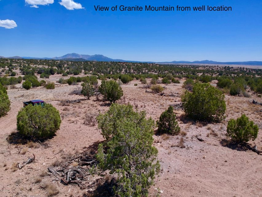 6800 W Rambling Road Prescott, AZ 86305 - MLS #: 1013623