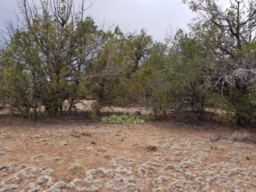 33647 W Calle Azul Seligman, AZ 86337 - MLS #: 1009147
