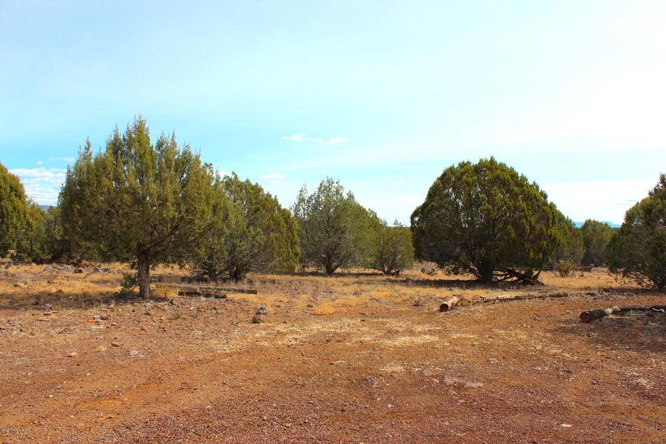 123 W Abandoned Trail Ash Fork, AZ 86320 - MLS #: 1013799