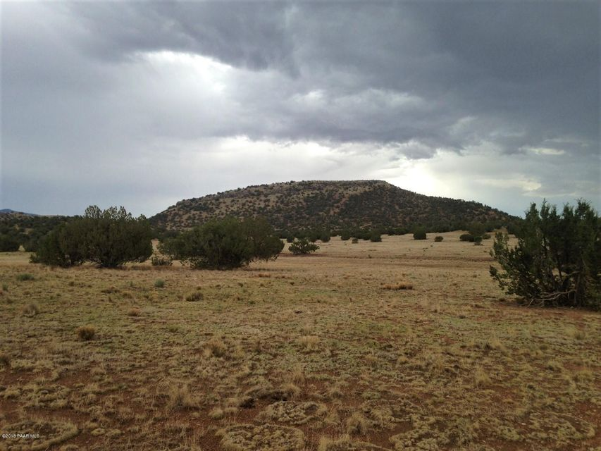 23701 W Walking Stick Road Seligman, AZ 86337 - MLS #: 1013827