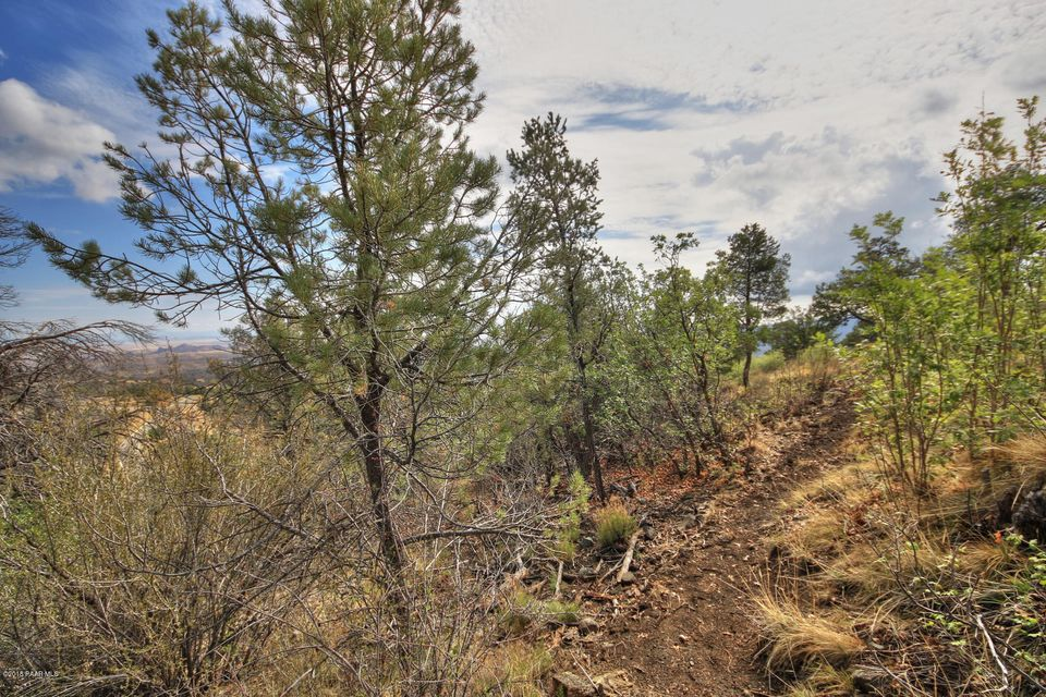 699 Goldenoak Circle Prescott, AZ 86303 - MLS #: 1013844