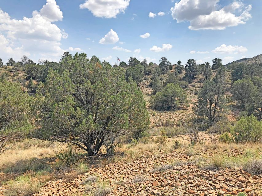 0000 W Hidden Canyon Road Chino Valley, AZ 86323 - MLS #: 1014293