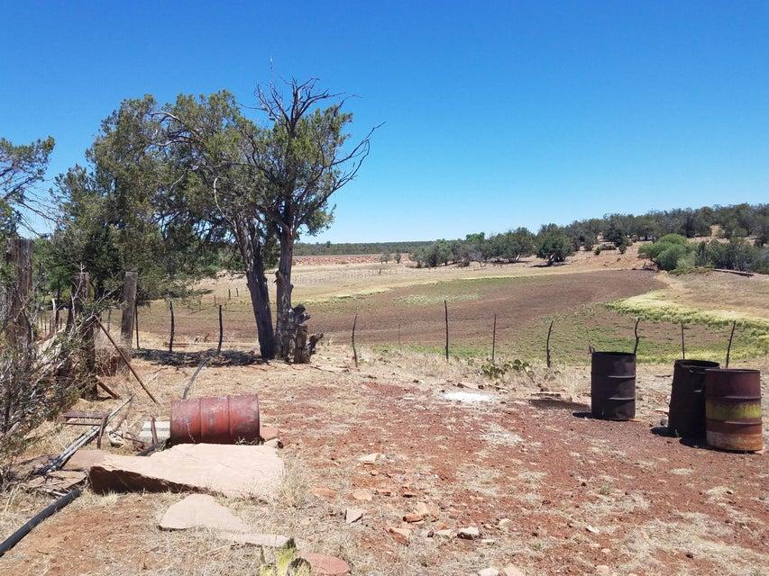 7603 Acres Sevens Ranch Road Ash Fork, AZ 86320 - MLS #: 1014453