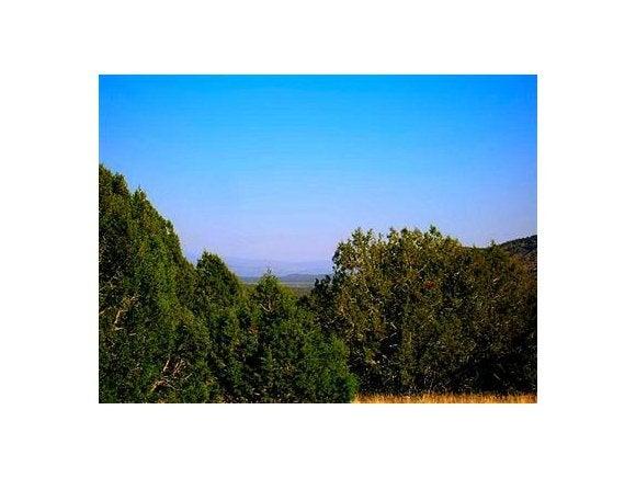 397 Westwood Ranches, Seligman, AZ 86337