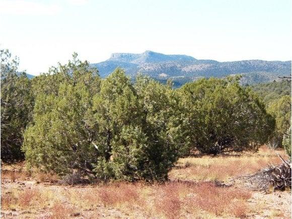 56 Unknown, Seligman, AZ 86337