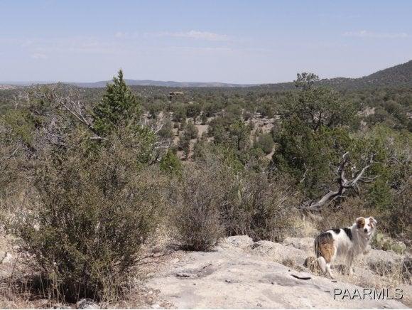 85 Shadow Rock Ranch, Seligman, AZ 86337