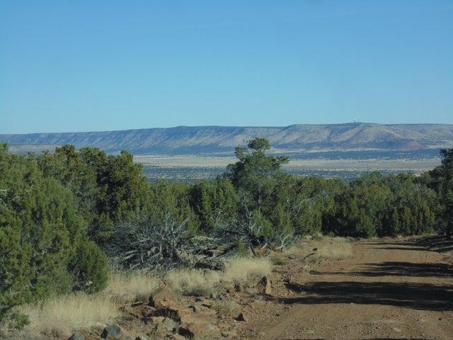 Lot 462 Sierra Verde Ranch, Seligman, AZ 86337