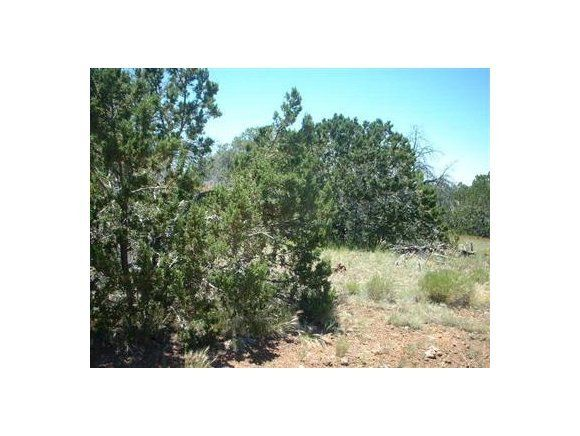 Lot 43 Green View Ranches, Seligman, AZ 86337