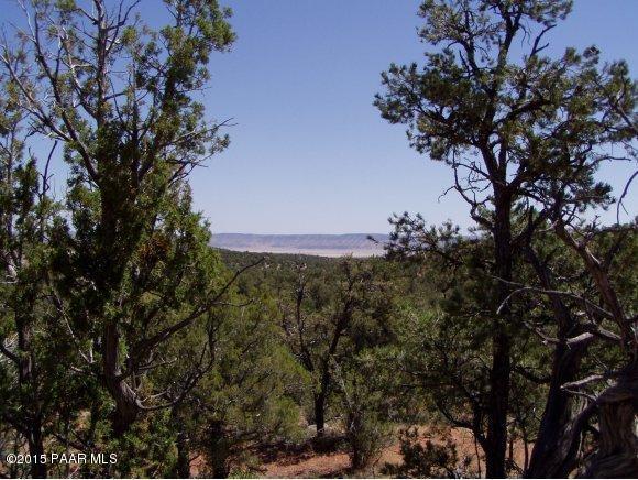 1024 Sierra Verde Ranch, Seligman, AZ 86337